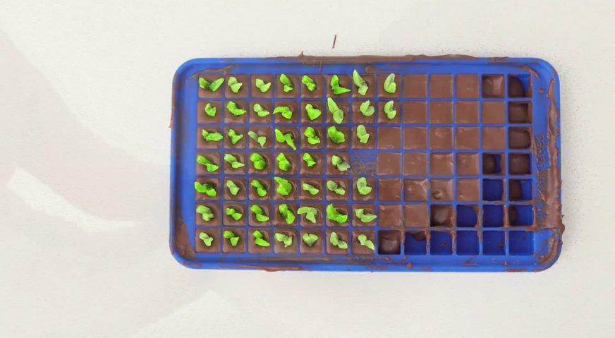 Торт майнкрафт: Силиконовую форму заполняем растопленным молочным шоколадом. Это будут земляные блоки. И в часть из них вставляем наши огородные растения.