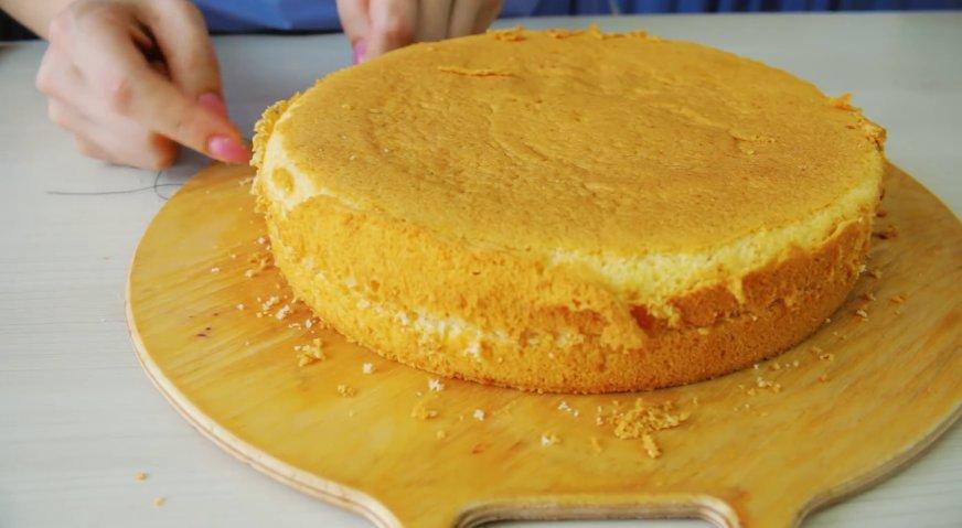 Бисквит классический пошаговый рецепт в домашних условиях